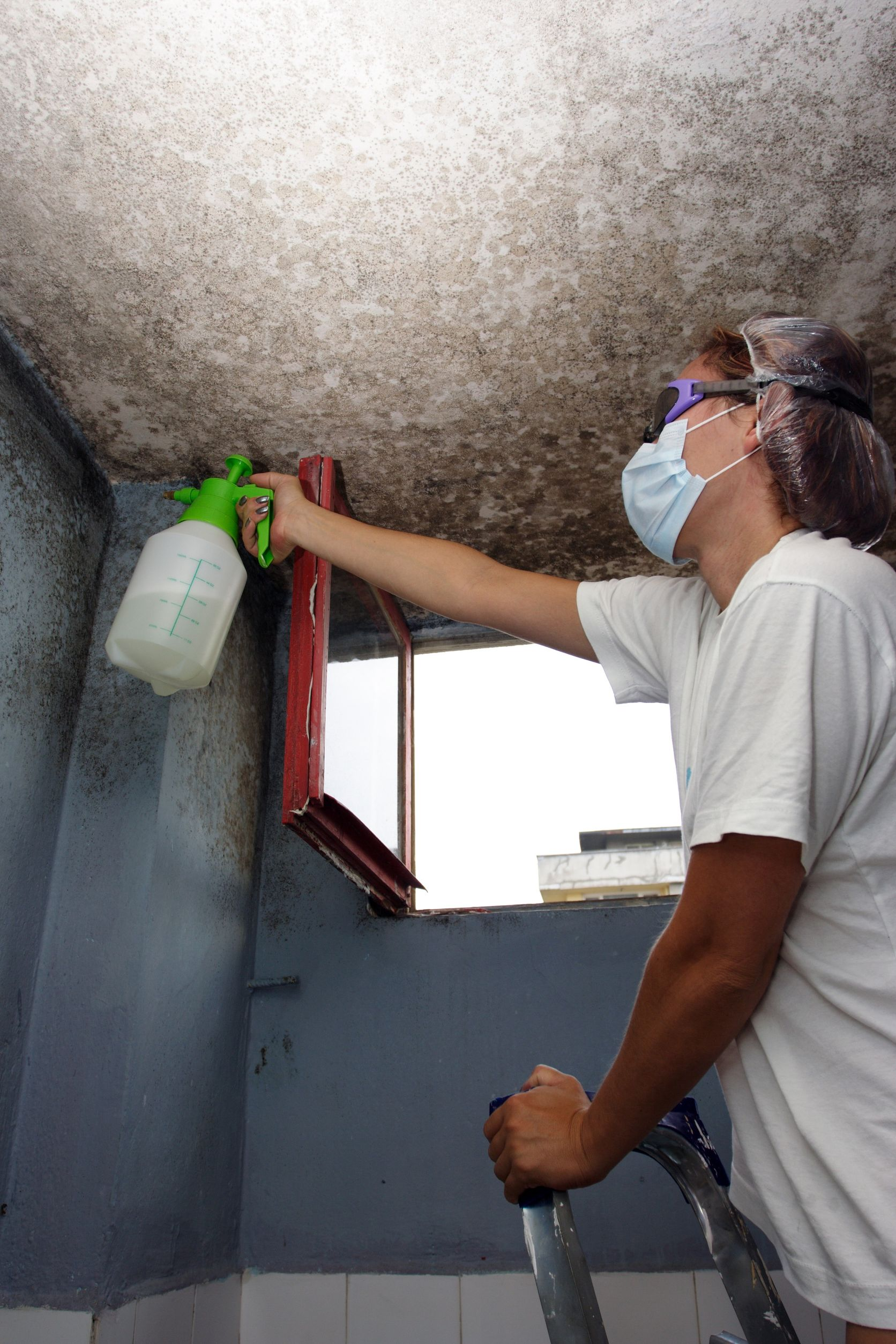Five Ways To Prevent Mold Growth In Your Home