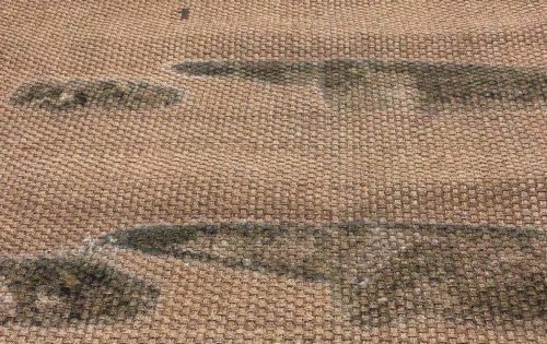 Seagrass Rug – Before