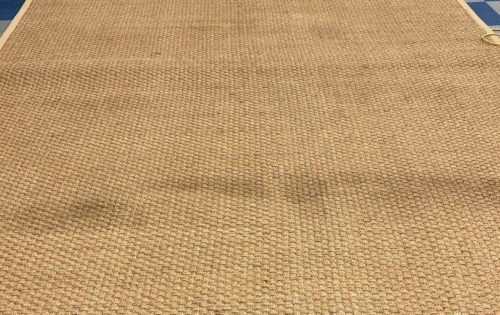 Seagrass Rug – After